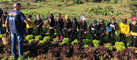 Alimentação saudável: alunos aprendem sobre a importância do consumo de verduras e hortaliças